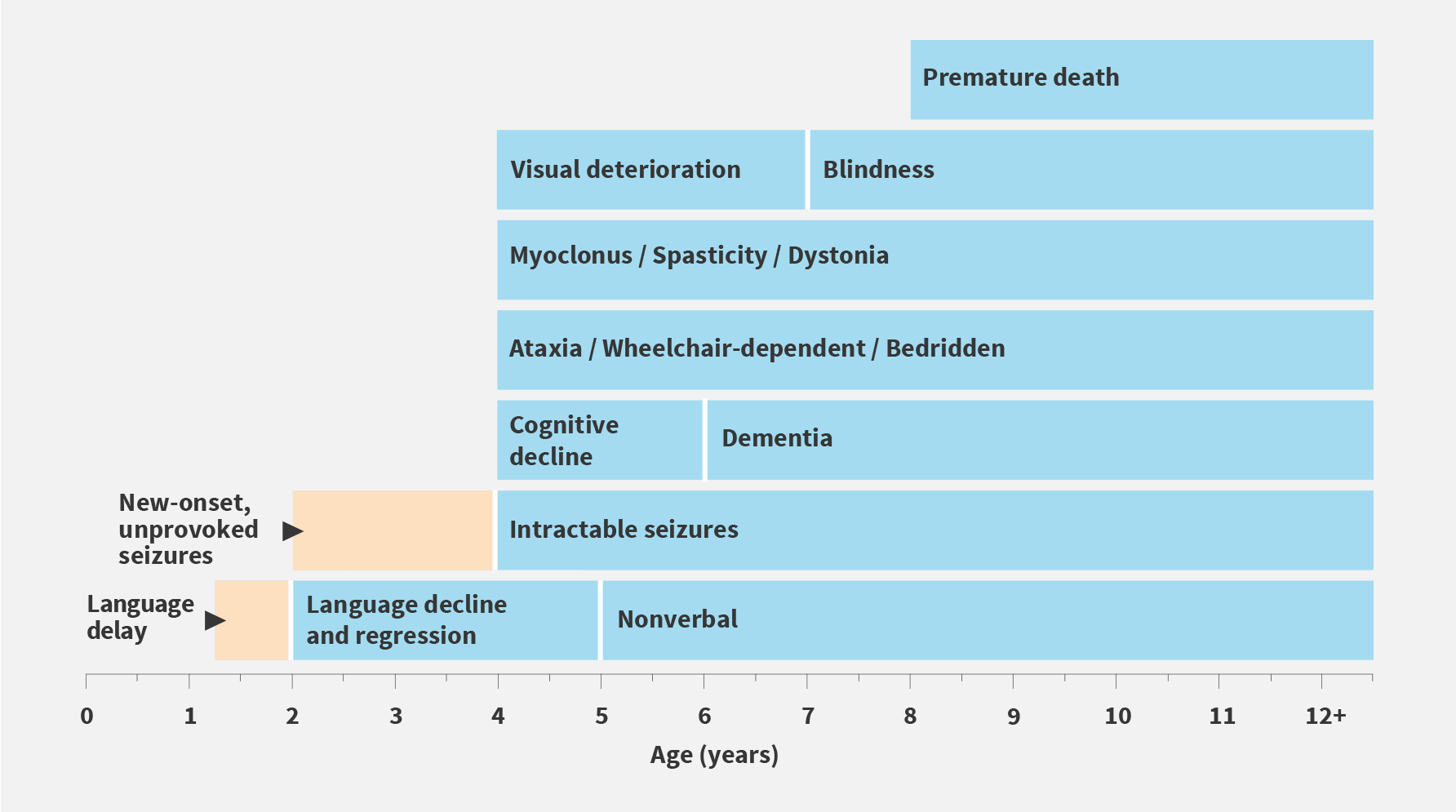 Age ranges depicted are averages for the classic late-infantile phenotype. Atypical phenotypes of CLN2 disease can vary in age of onset, rate of progression, and disease manifestation.